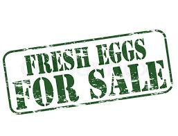 fresh eggs for sale sign